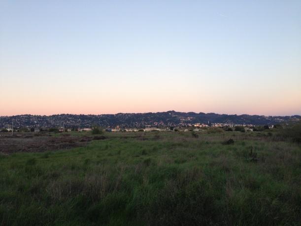 Looking back over the Berkeley Meadow to Berkeley. Photo credit: L Swierk